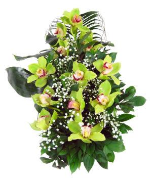 S suza orhideje zelene