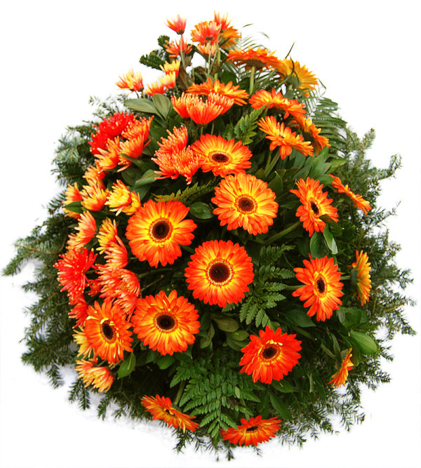 S venac narandžasti gerberi, narandžaste hrizanteme